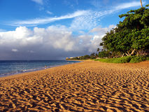 Kaanapali beach in Maui Hawaii. A beautiful beach with blue sky with some clouds at the horizon, the ocean at the left and tropical plants on the right. Long Stock Images