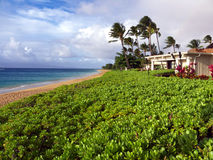 Kaanapali beach in Maui Hawaii. A beautiful beach with blue sky with some clouds at the horizon. Palm trees and lush green plants surround a luxury beach home Stock Images