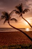Kaanapali Beach Maui Sunset. A beautiful sunset with silhouetted palm trees on Kaanapali beach Maui royalty free stock photos