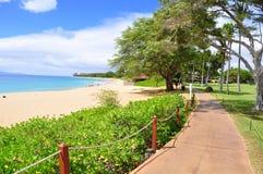 Kaanapali, Maui, Hawaï stock foto's