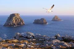Kaap pen-Hir bij schemer Stock Foto's