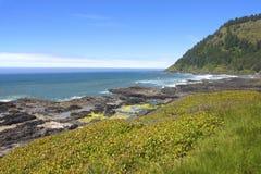 Kaap Perpetua, de kust van Oregon. royalty-vrije stock afbeelding