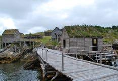 Kaap Willekeurig Newfoundland royalty-vrije stock foto's