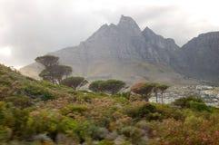Kaapstad Stock Afbeeldingen