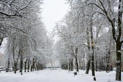 Kaarli-Boulevard. Tallinn, Estland Lizenzfreies Stockfoto