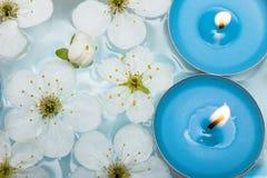 Kaars met de lentebloemen Royalty-vrije Stock Foto