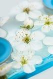 Kaars met de lentebloemen Stock Afbeeldingen