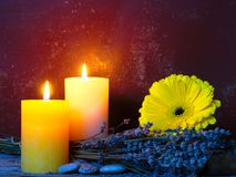 Kaarsen, Gerbera en Lavendel Stock Fotografie