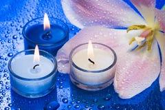 Kaarsen met bloem Royalty-vrije Stock Fotografie