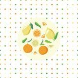 Kaart met citrusvrucht Royalty-vrije Stock Fotografie