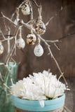 De Eieren van kwartels op een Brunch Royalty-vrije Stock Foto