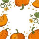 Kaart met hand getrokken pompoenen vector illustratie