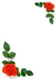Kaart met rozen en bladeren royalty-vrije stock afbeeldingen