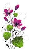 Kaart met verse bloemen Stock Afbeeldingen