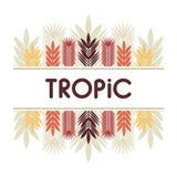 Kaart, uitnodiging, banner met tropische bladeren Kader met tropische installaties royalty-vrije illustratie