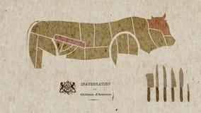 Kaart van de Anatomie van Koelichaamsdelen voor Keukendoeleinden stock footage