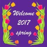 kaart van de de lente de mooie en elegante uitnodiging van 2017 Stock Afbeeldingen
