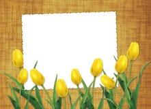 Kaart voor de vakantie met bloem Stock Foto's