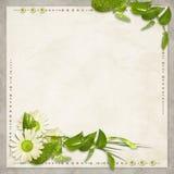 Kaart voor de vakantie met bloemen Stock Afbeelding