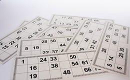 Kaarten en vaatjes voor het Russische spel van lottobingo op witte achtergrond royalty-vrije illustratie