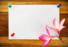 Kaartontwerp, frangipani (plumeria) Royalty-vrije Stock Afbeeldingen