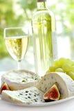 Kaas, druif, fig. en wijn royalty-vrije stock foto's