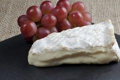 Kaas en druiven Stock Fotografie
