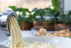 Kaas en gehaktmolen Stock Foto's