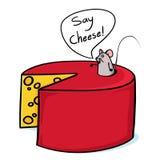 Kaas en muisillustratie Stock Afbeeldingen