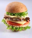 Kaas hambuger stock foto