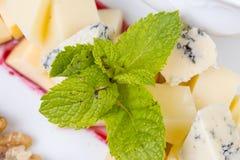 Kaas met munt en saus stock foto