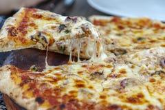Kaaspizza op de plaat stock fotografie