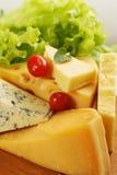 Kaasverscheidenheid Stock Fotografie