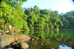 Kaatoba do lago fotografia de stock royalty free
