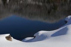 Kabłąkowatość - Śnieżny dzień w NC fotografia stock