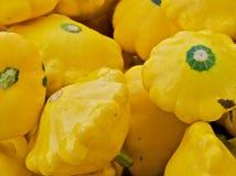 kabaczka kolor żółty Obrazy Royalty Free