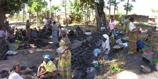 Kabalo, Democratische Republiek de Kongo: Vrouwen die houtskool verkopen royalty-vrije stock foto's
