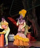 Kabaretowy piosenkarz w Tropicana przedstawieniu Obrazy Royalty Free
