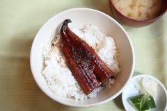 Kabayaki eel on rice japanese style Stock Photo