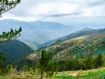 Kabayan Benguet. This site is trail going to Mt. Pulag Stock Images