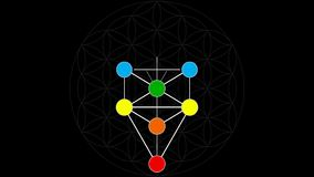 Kabbalah Color Spectrum of the Tree of Life on a Flower of Life Background stock video footage