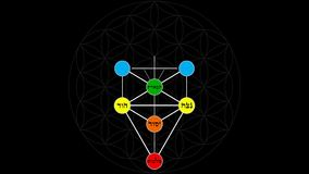 Kabbalah Tree of Life with Hebrew Text in a Color Spectrum on a Flower of Life Background stock video footage