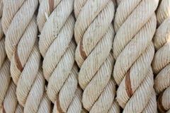 Kabel stock foto