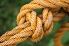 Kabel royalty-vrije stock fotografie