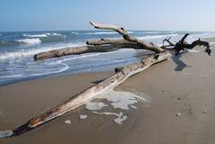 Kabel auf Strand Lizenzfreie Stockbilder