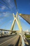 Kabel blev bron i världen Sao Paulo brazil royaltyfria foton
