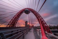 Kabel-bliven bro royaltyfria bilder