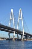 Kabel-bliven bro i St Petersburg royaltyfri foto