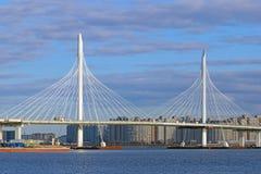 Kabel-bliven bro i St Petersburg Arkivbild