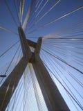 Kabel-bliven bro i världen royaltyfri foto